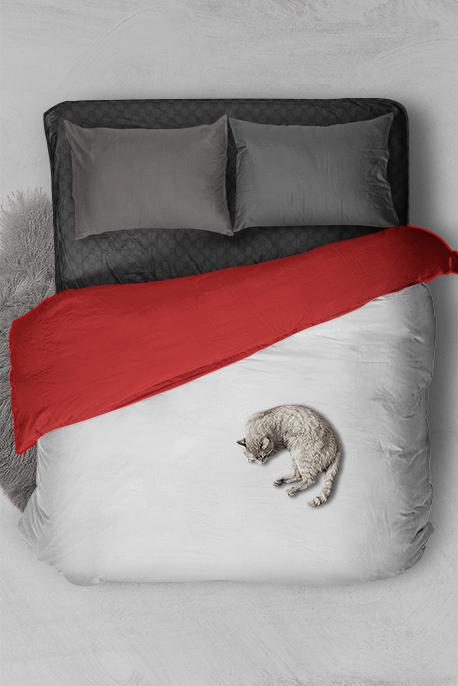 Double Blanket - Image